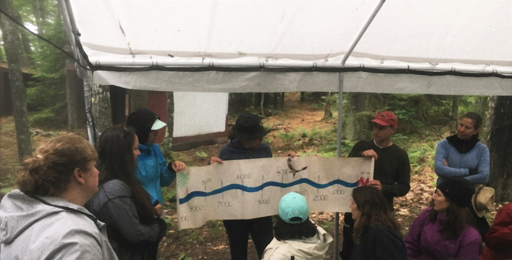 Group of people holding a timeline outside in a forest