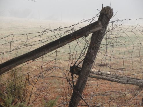 fence-Myke_Pic_1.jpg