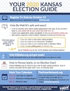 Download How To Vote in 2020