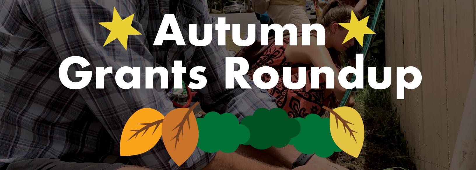 summer grants roundup