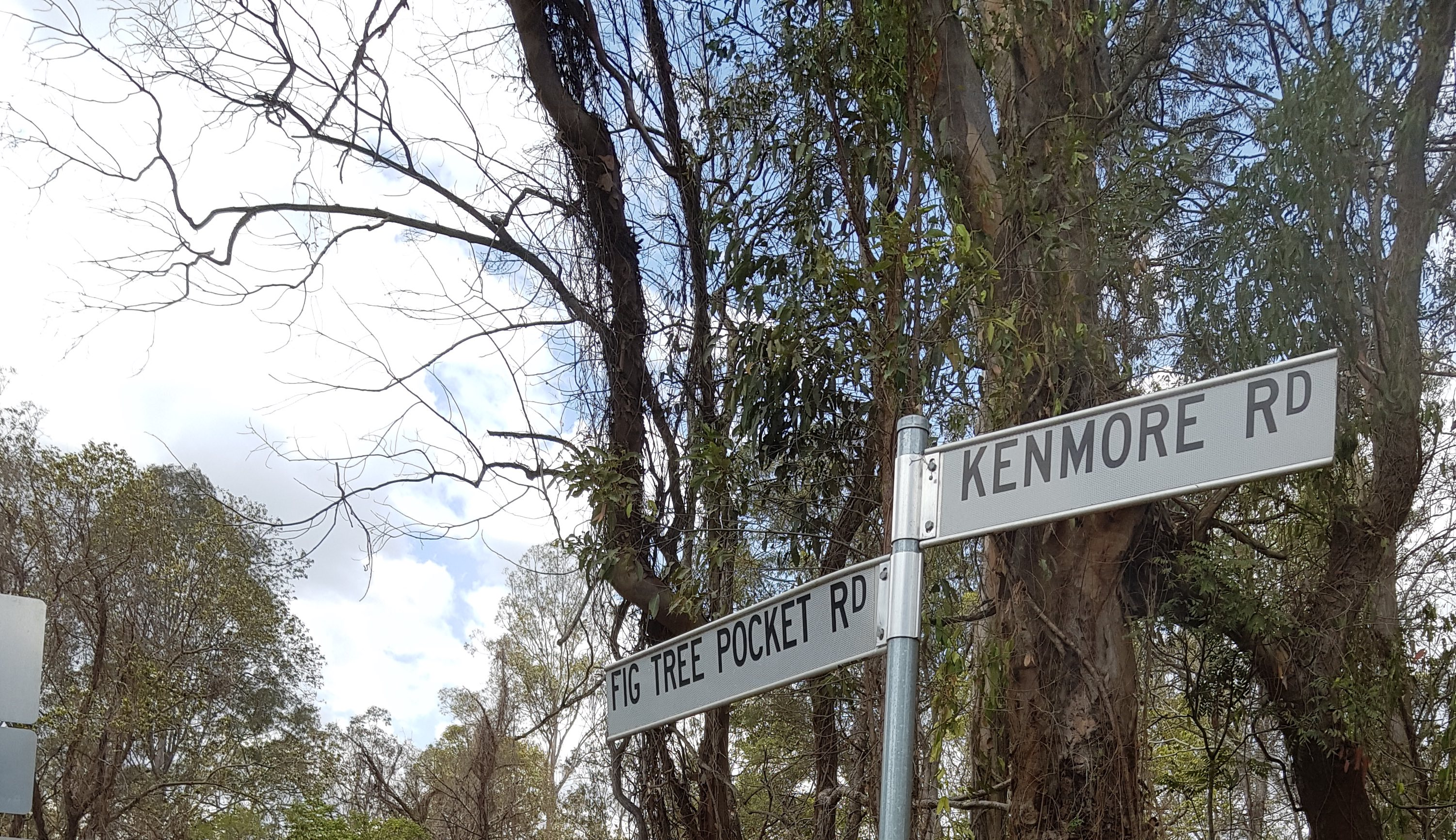 As Fig Tree Pocket changes, we need to make our streets safe for everyone.