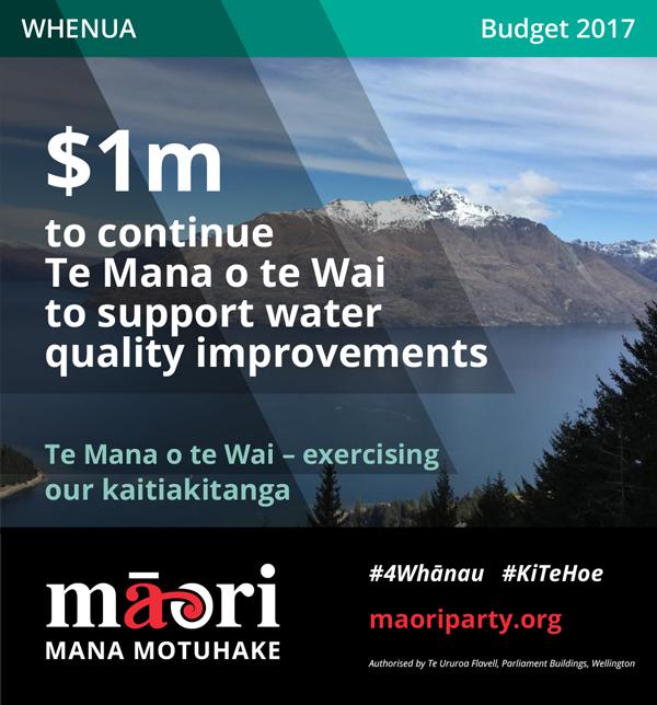 2017-Budget-Meme---Whenua-3.jpg