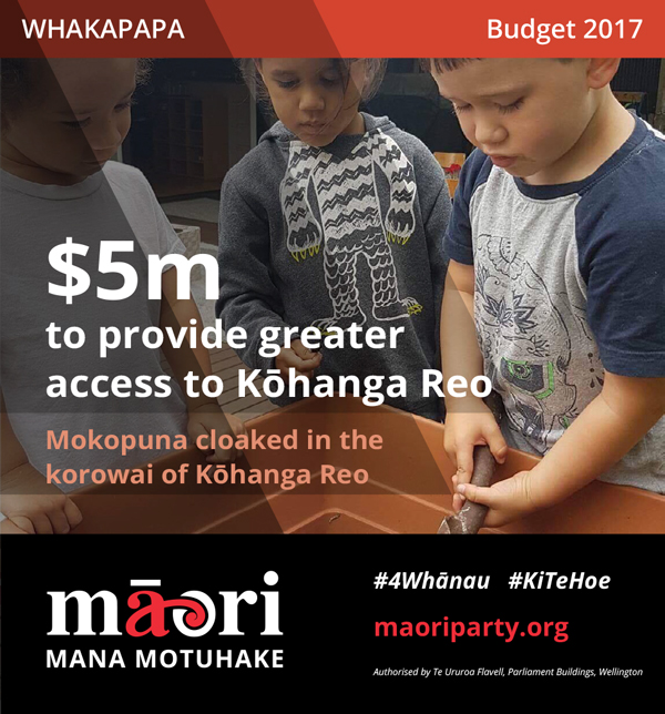 2017-Budget-Meme---Whakapapa-2.jpg