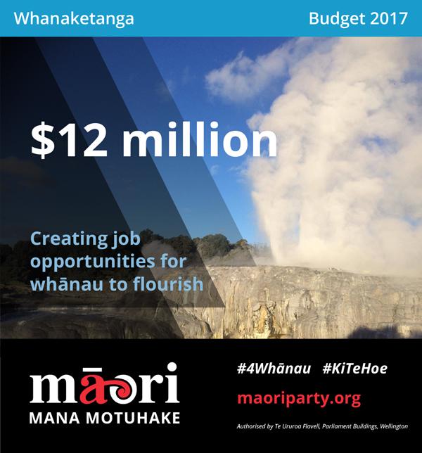 2017-Budget-Meme---Whanaketanga-v2-2.jpg