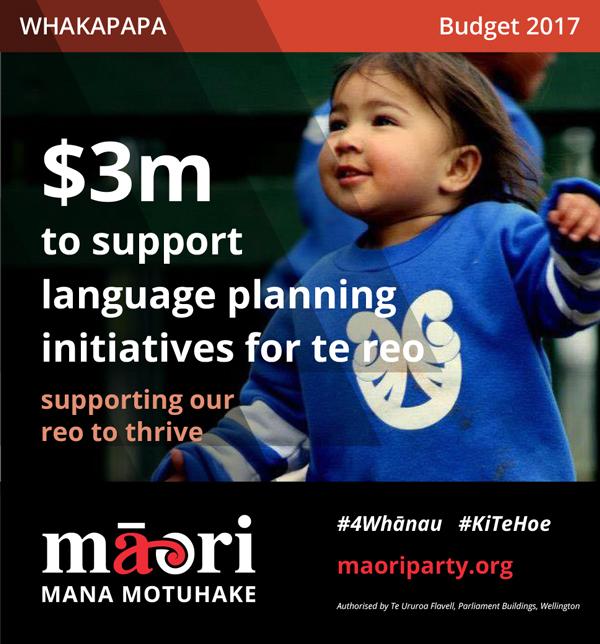 2017-Budget-Meme---Whakapapa-3.jpg