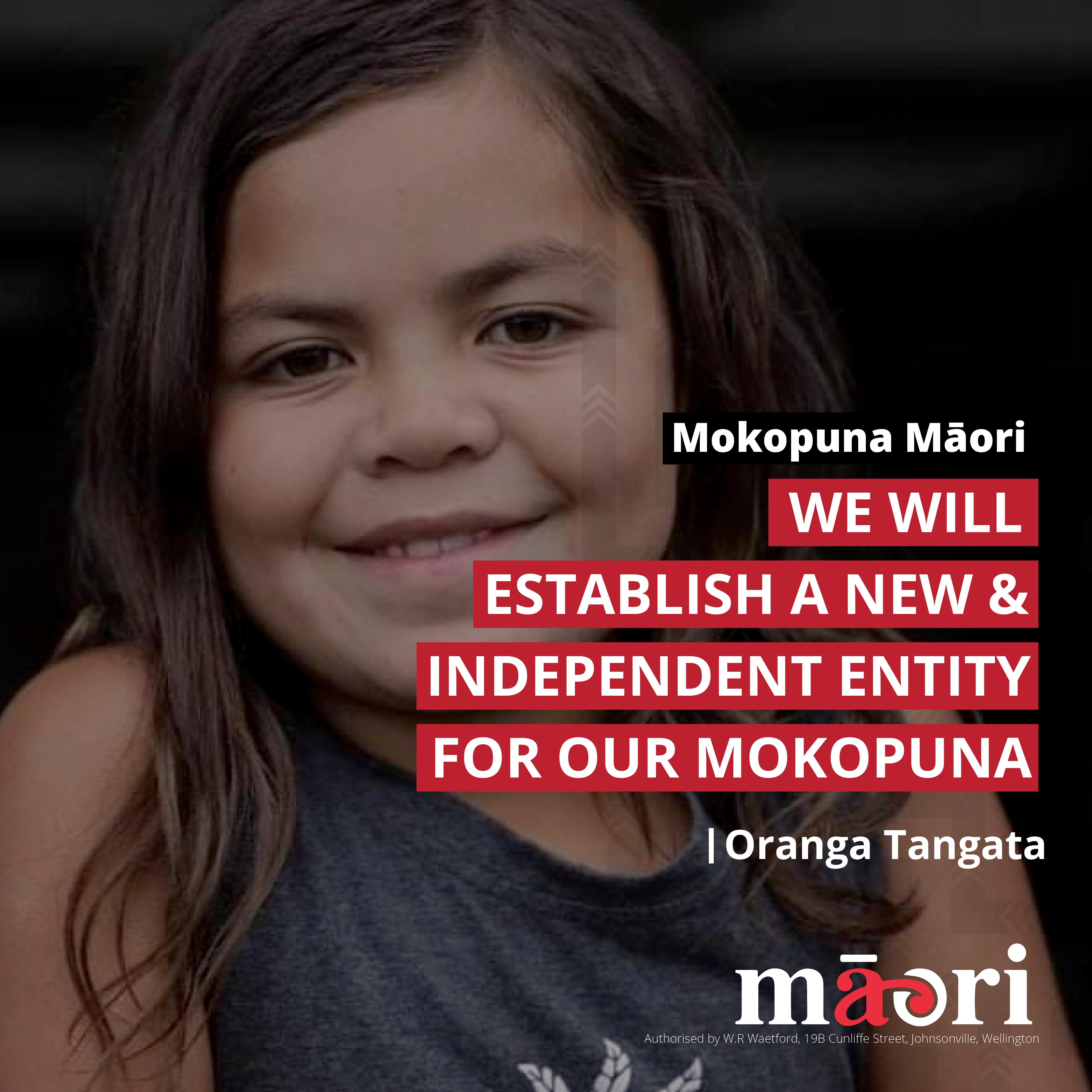 T1_Mokopuna_Māori_v2.png