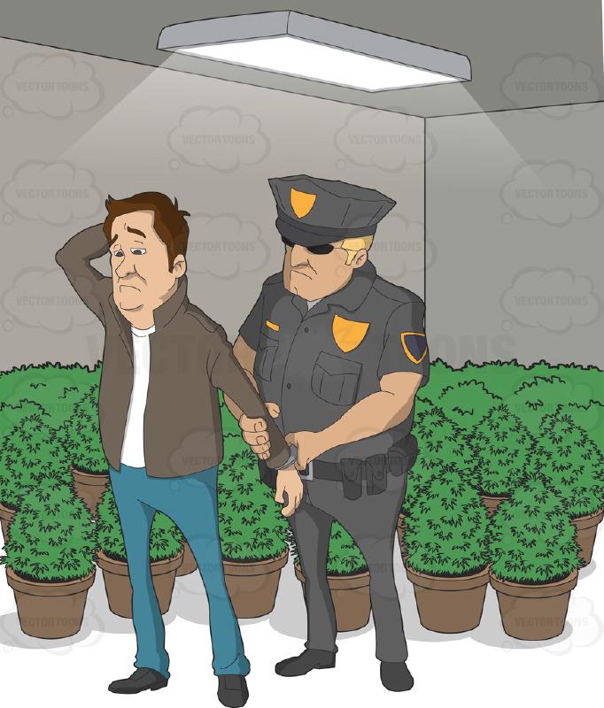 cop_arrest_mj_grower.jpg