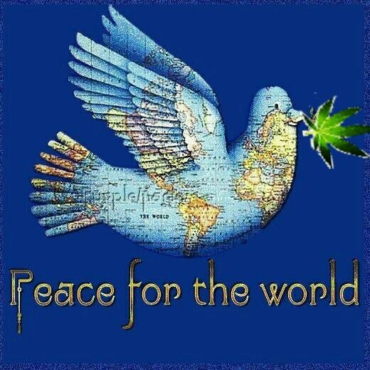 peace_bird.jpg