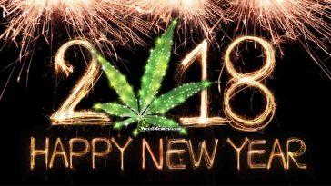 2918_new_year.jpg