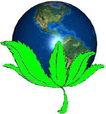 world_pot_leaf.jpg