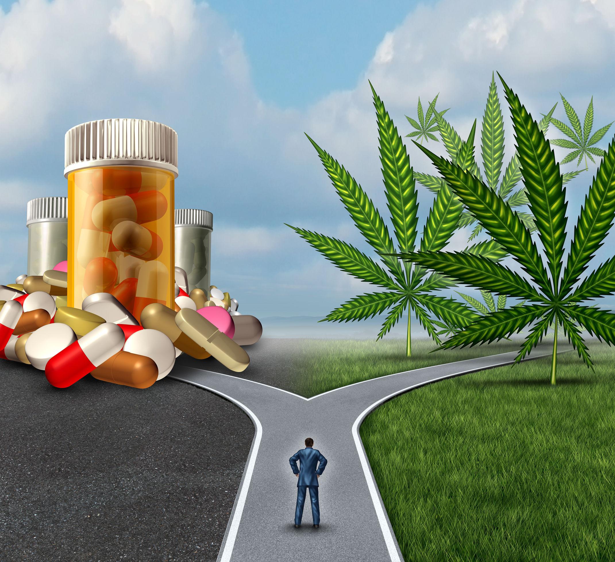 mj_vs_opioid.jpg
