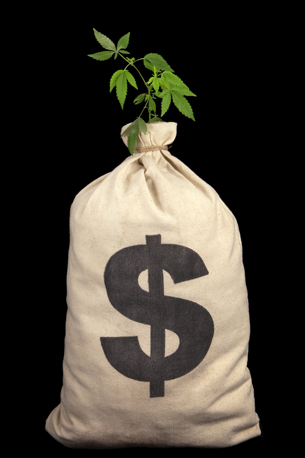 pot_money_bag.jpg