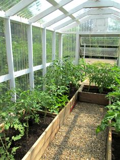 greenhouse_small.jpg
