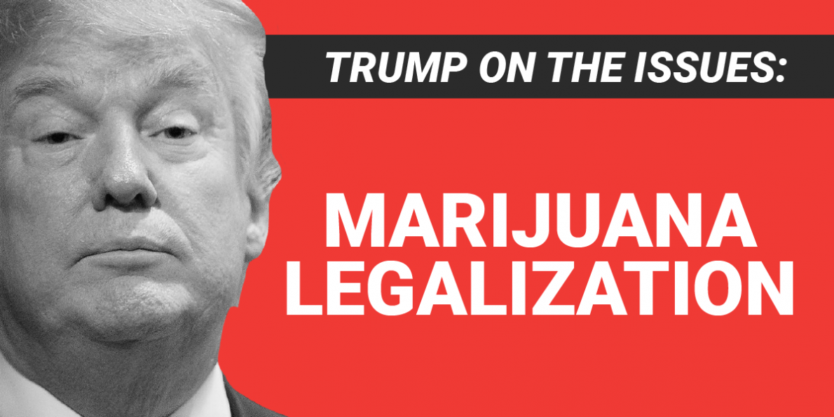 trump_mj_legal.png