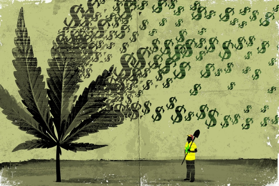 marijuana_money_leaf.jpg