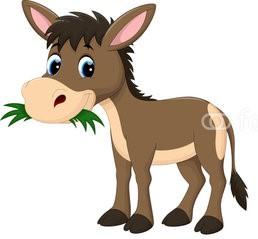 donkey_eating.jpg