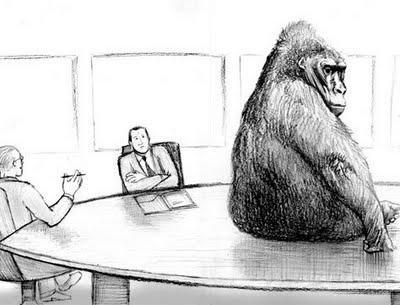 800_lb_gorilla.jpg
