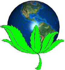 world_pot_leaf.jpg