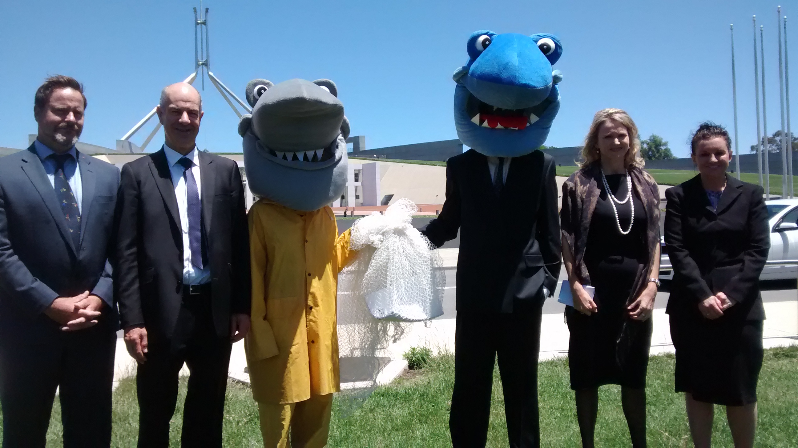 Sharks_Pollies_and_petitioners.jpg