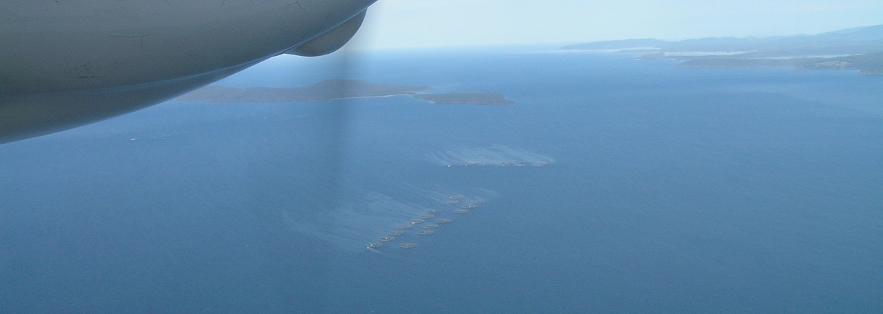 Salmon_farms_in_DEntrecasteaux_Channel_with_impact_spread_-_near_partridge_island_aug2014_med-res.jpg
