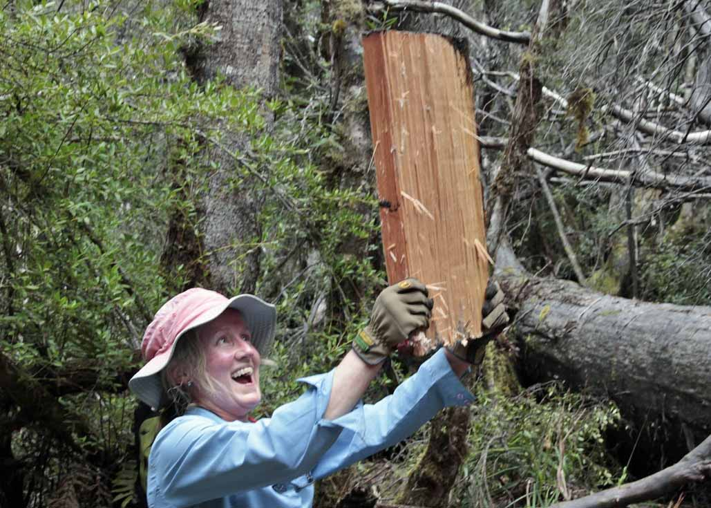 timber_splitting_Lake_Skinner_working_bee_4.11.14.jpg