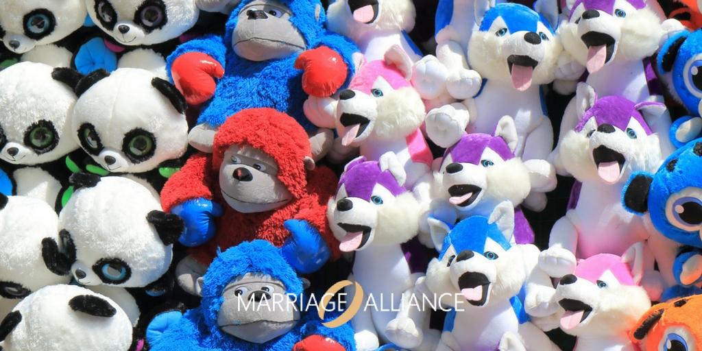 Marriage-Alliance-Australia-Gender-Neutral-Bandwagon.jpg
