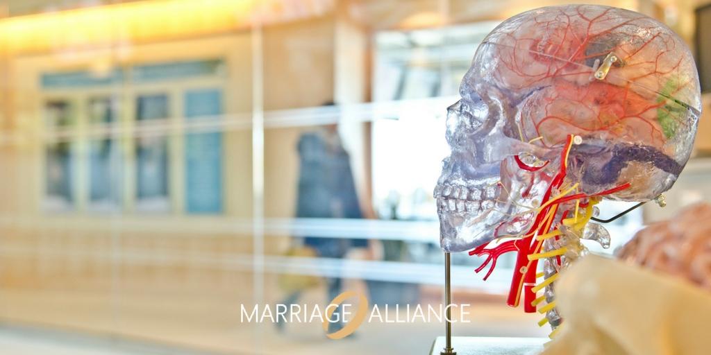 Marriage-Alliance-Australia-Transgenderism-to-Be-Different.jpg