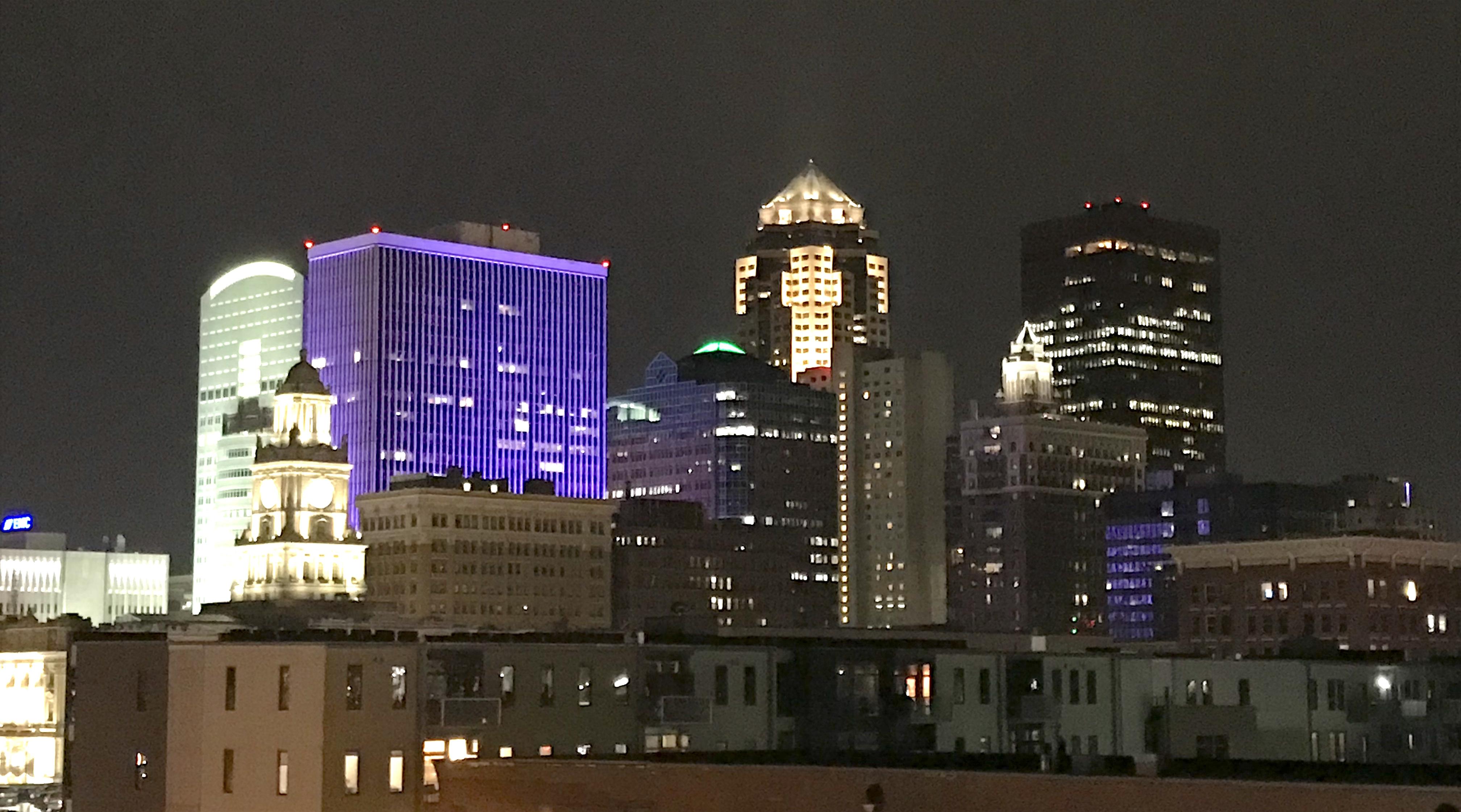 DSM Skyline Purple