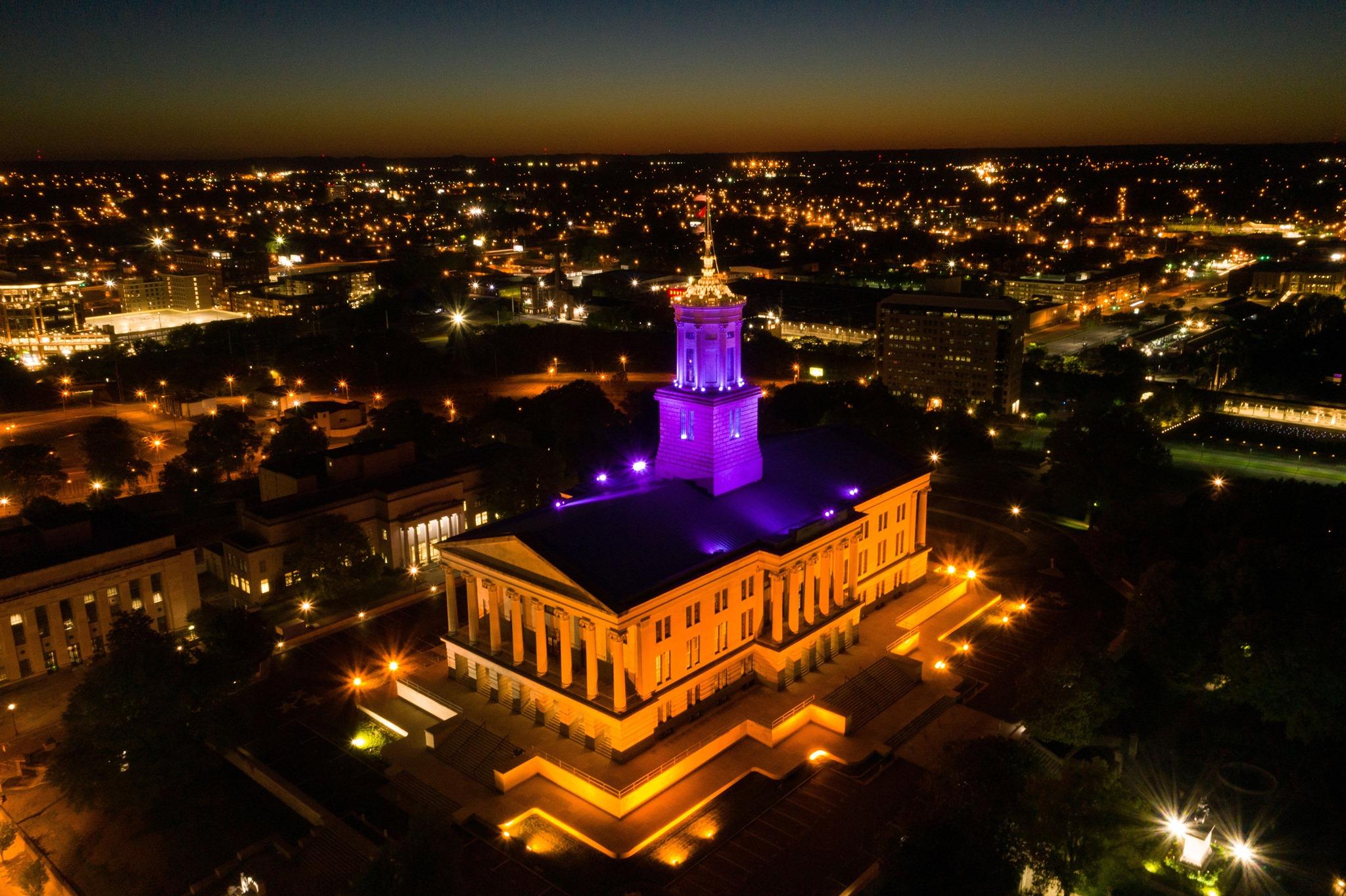 Light the State Purple