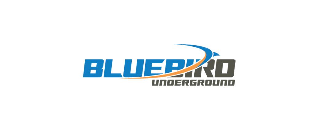 Bluebird_Underground_Logo_content_slider.jpg