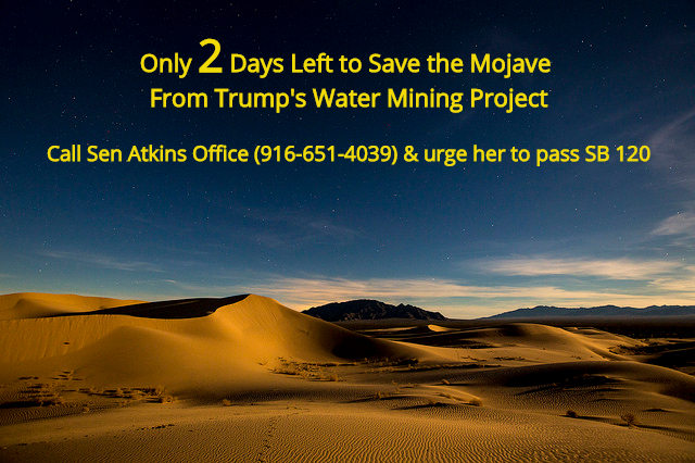 Mojave_Trails_Cadiz_Dunes_2_days_left_Atkins_Call.jpg