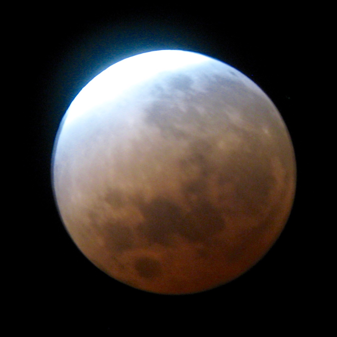 lunar_eclipse_feb_2008.jpg