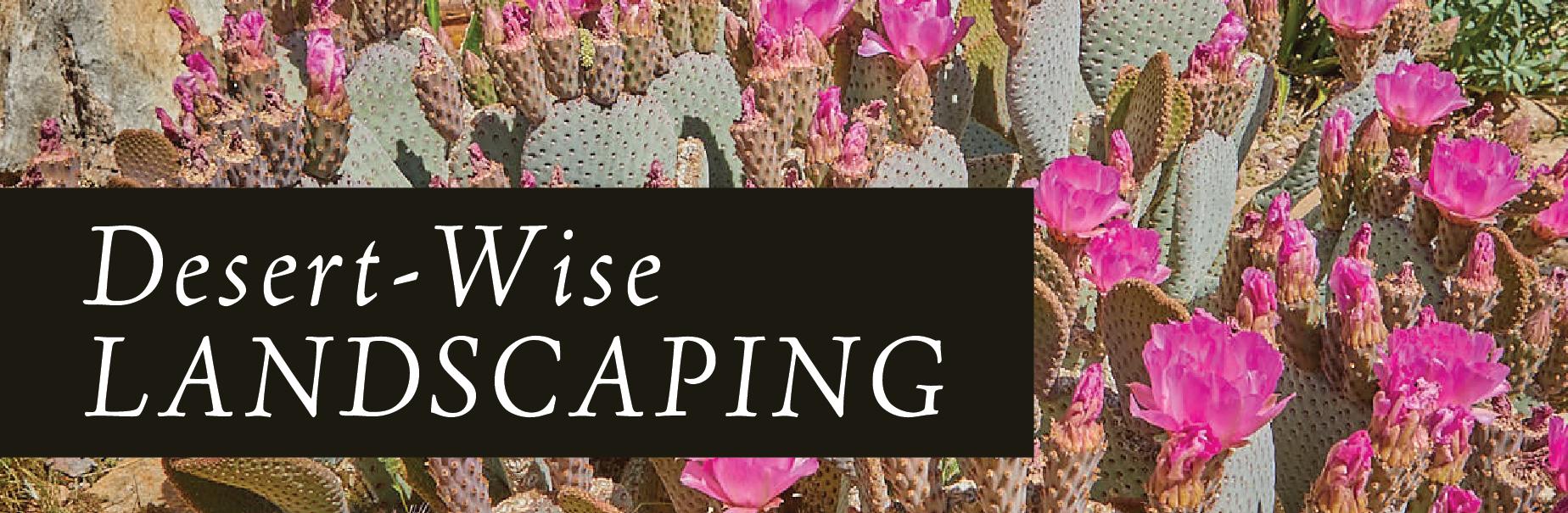 desert wise landscaping banner