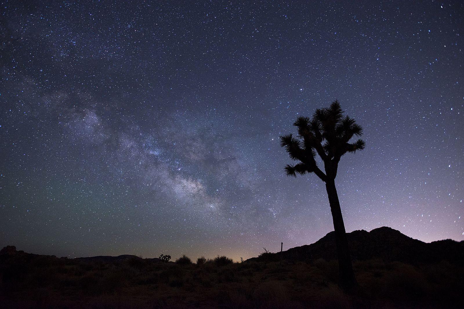 NPS/Lian Law photo night skies in JTNP