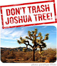 dont-trash-joshua-tree200.jpg