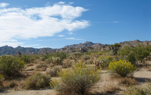 desert_scenic.jpg