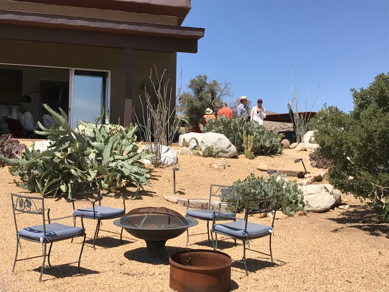 Alvarez-Byrd_chairs__guests__cactus.jpg