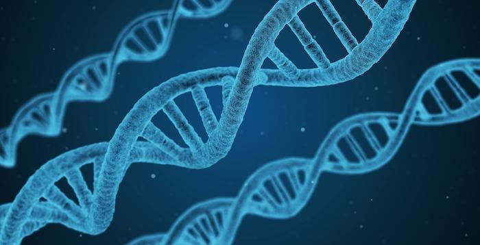 DNA-nb.jpg