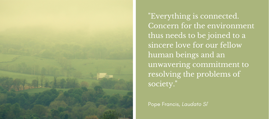 environment pope francis quote