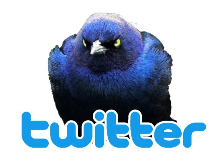 Twitter_logo_MediuM.jpg