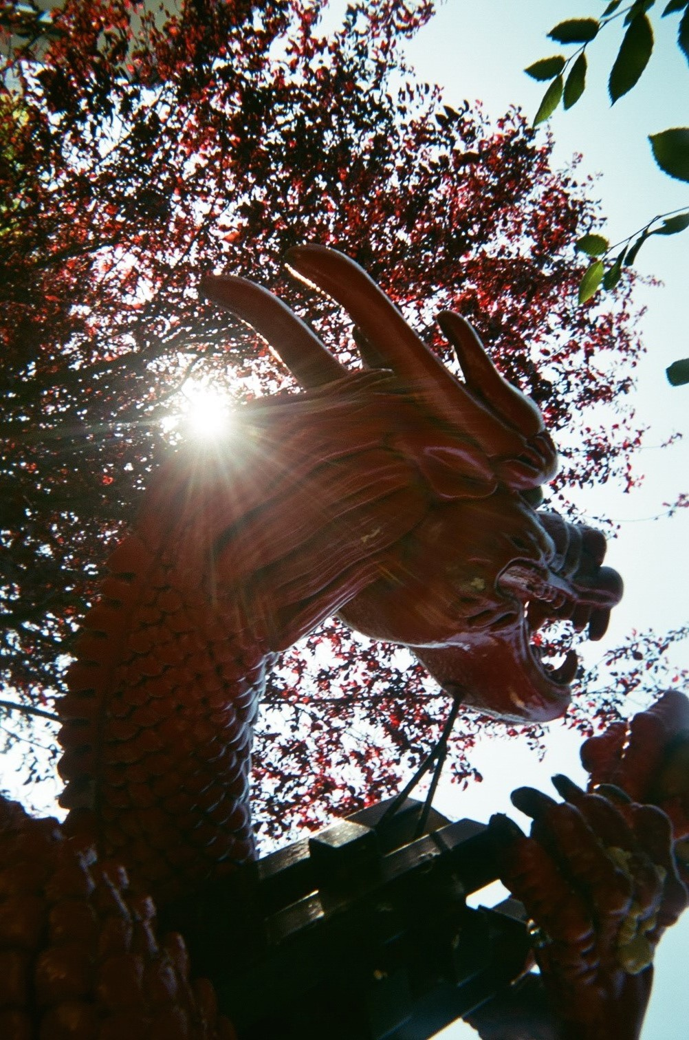 Red_Dragon.jpg