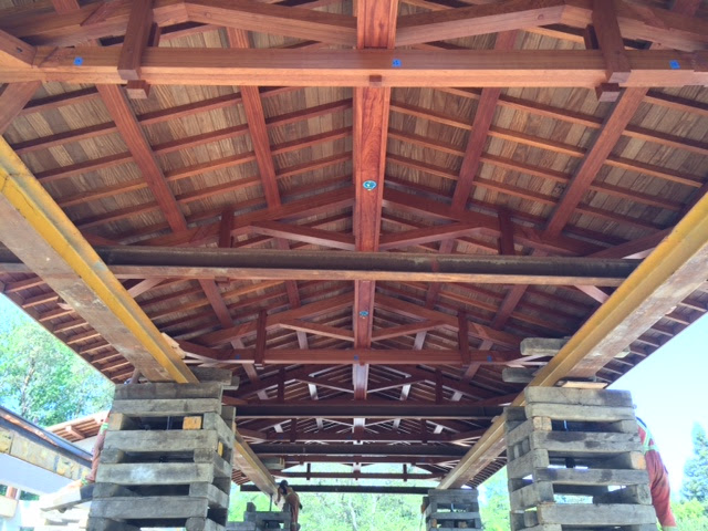 Coval Pool House Roof