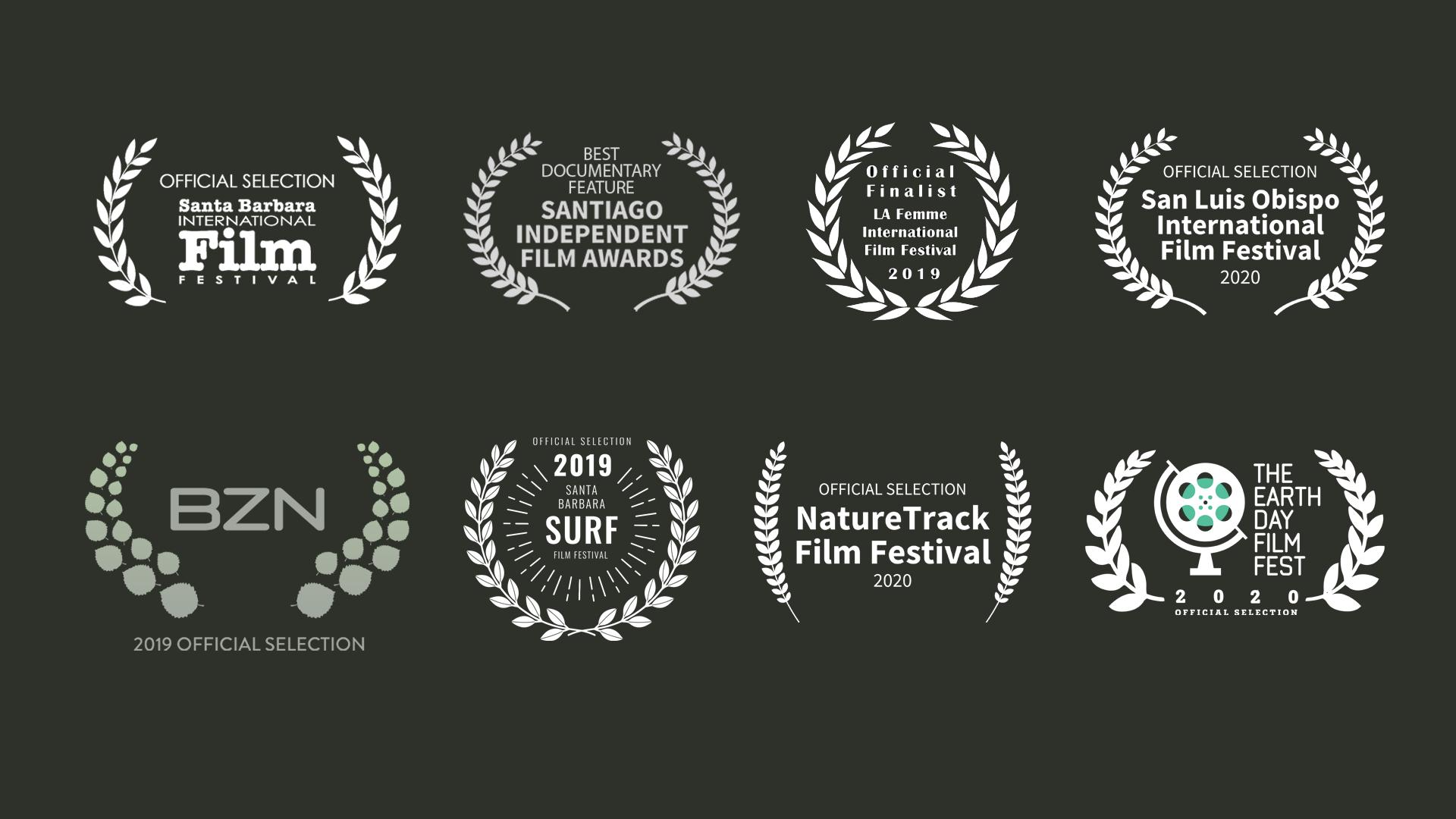 Better Together film festival laurels