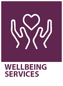 LGBTIQ Wellbeing Services Icon