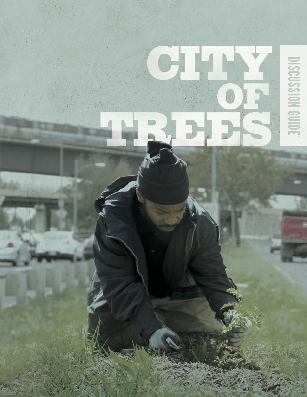 CityofTrees_Discussion_Guide.jpg