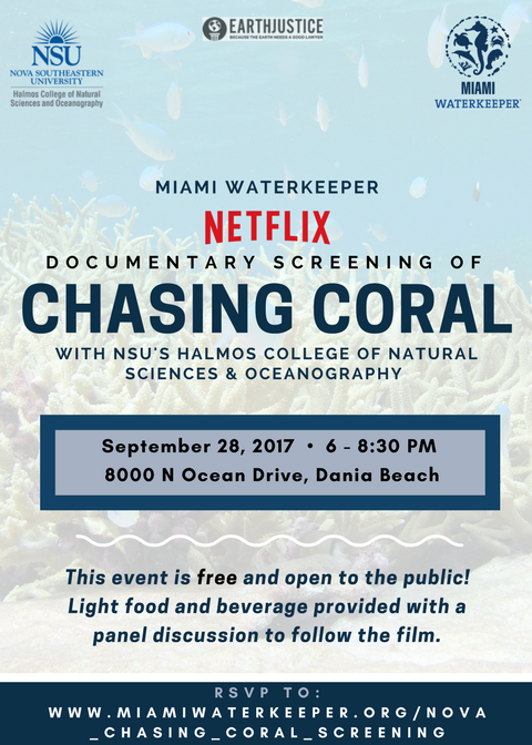FNL_NSU_Chasing_Coral.png