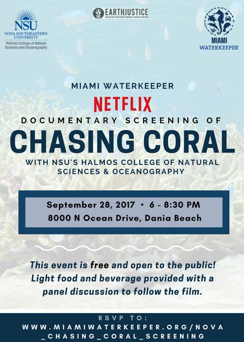 Nova_Chasing_coral.png