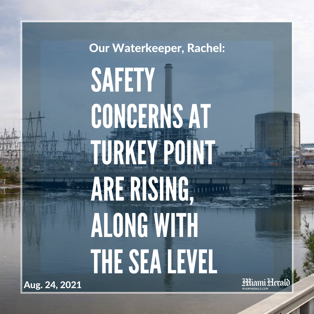 Safety concerns at Turkey Point are rising, along with the sea level