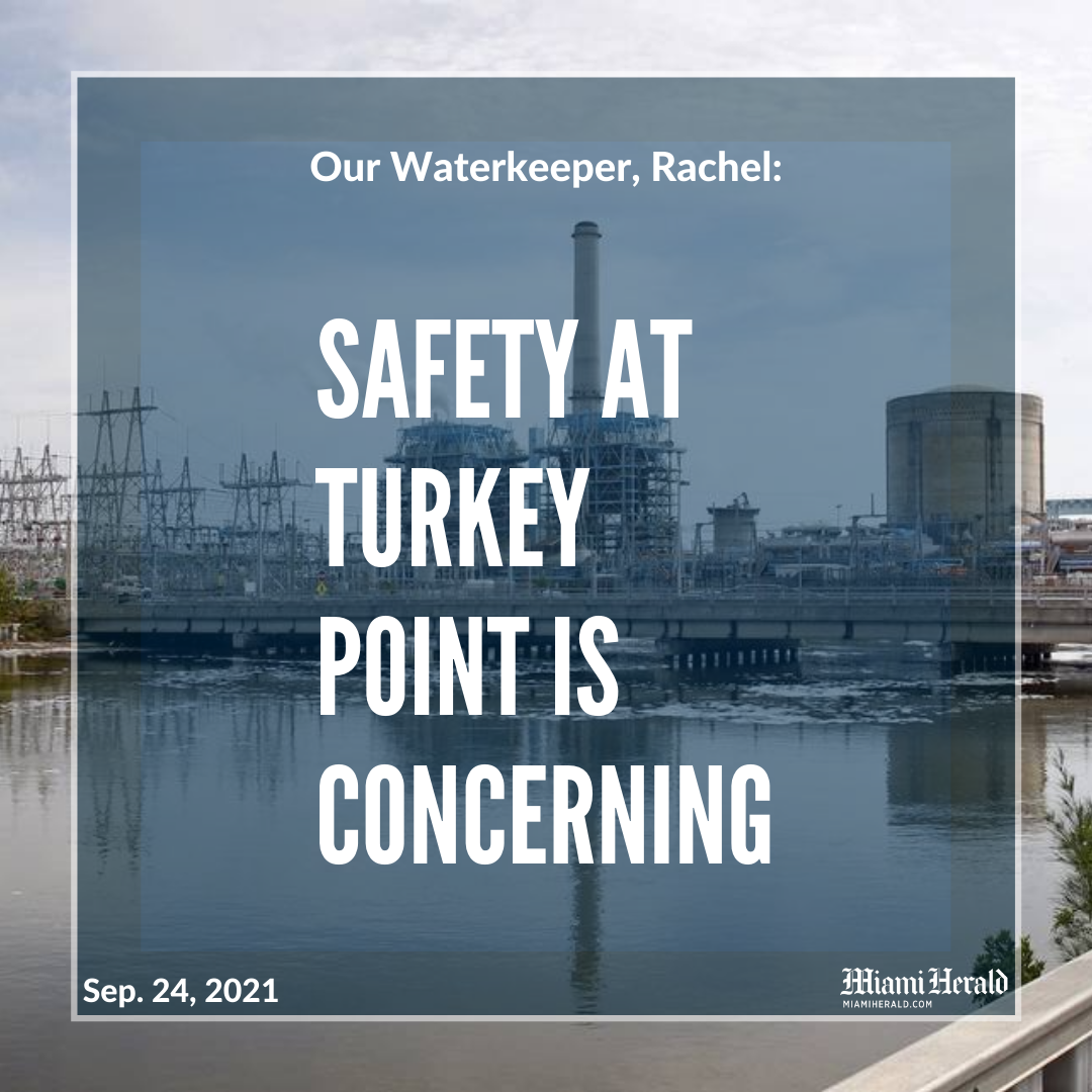 Safety at Turkey Point is concerning