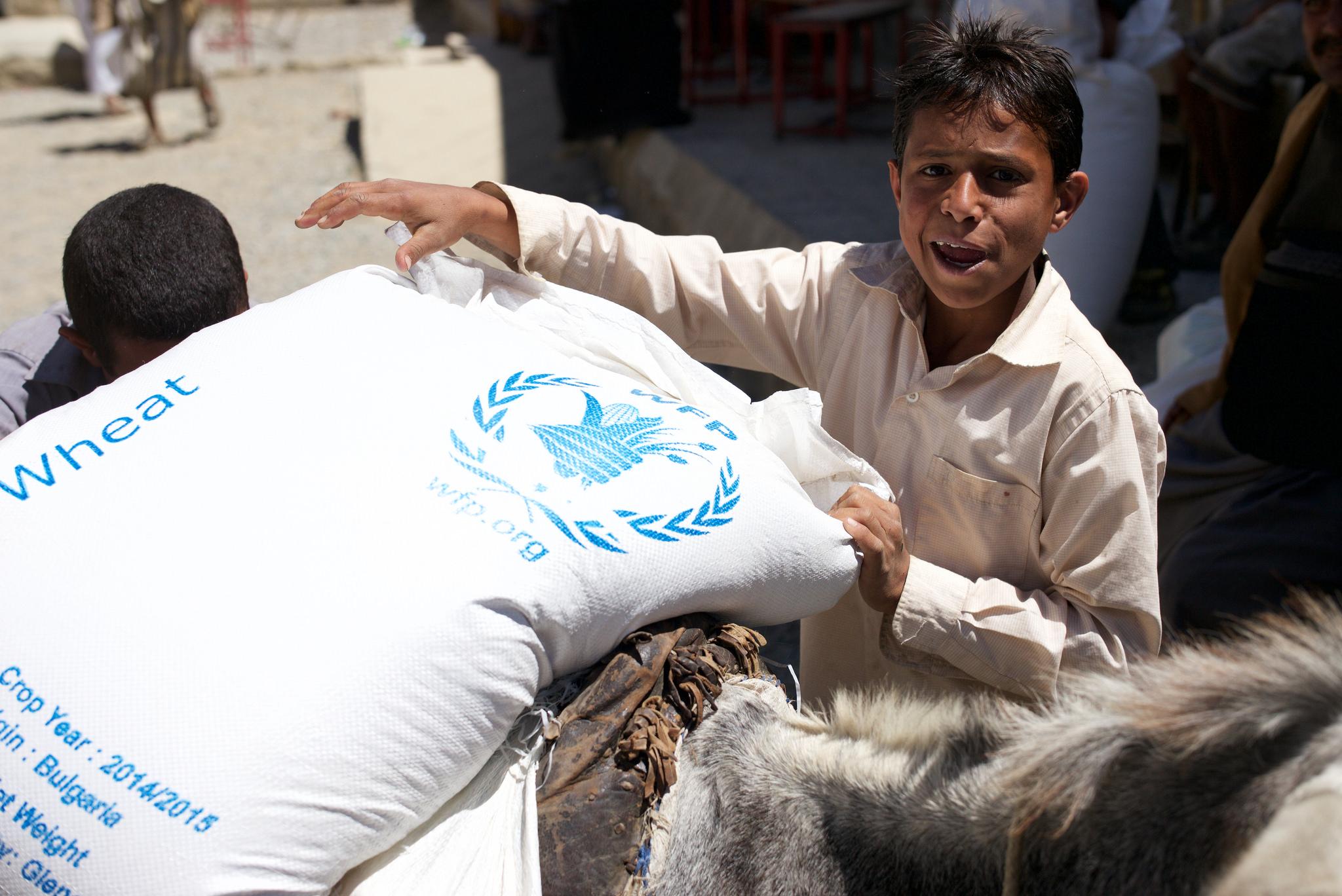 Yemen WFP